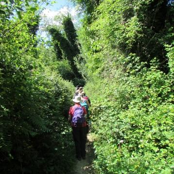 Escursione Monti Livornesi