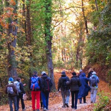 L'autunno nella Riserva Naturale Regionale dei Monti Livornesi