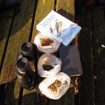 Kit del bravo birdwatcher e semi e mangimi per aiutare i passeriformi a passare l'inverno