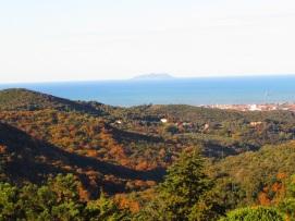 Veduta di Livorno dalla Valle Benedetta