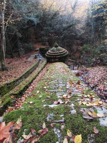 Escursione all'Acquedotto sulle Colline Livornesi
